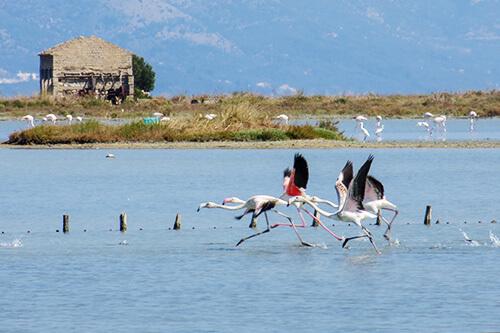 Korission meer op Corfu
